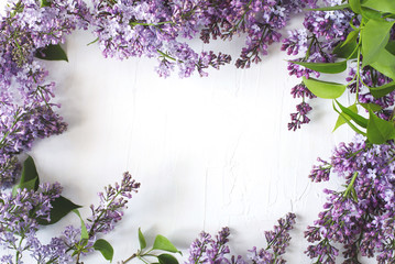 Lilac blossom. Lilac flowers frame on white background, top view, copy space