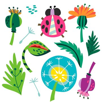 A set of vector hand drawn illustrations:  summer flowers and ladybird.