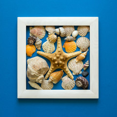 Minimalism. Masterpiece in wooden frame. Sea shells. Top view. Flat lay. Sun protection concept.