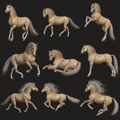 Buttermilk Horse, 3d CG