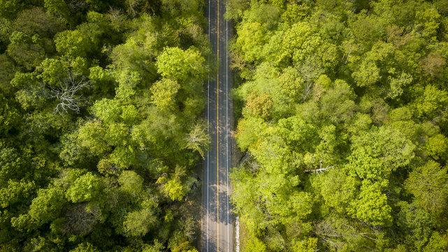 Vermont Route 125 II