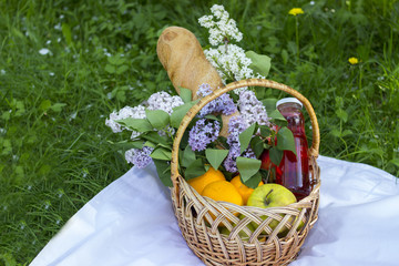 Basket with fruits for a picnic. Picnic in the park on the grass