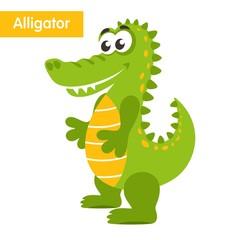 Cartoon alligator isolated on white background. Cute crocodile. Vector illustration.