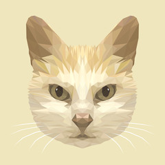 Cat_Polygon illustration #Vector Graphics