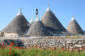 Cone shaped trulli houses with poppies in Puglia
