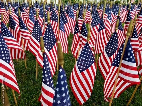 Large Grouping of Hundreds of American Flags Waving Gently; Perfect for Patriotism, Symbolism, Veterans, Military, Americans, Thankful Service and Holiday Concepts