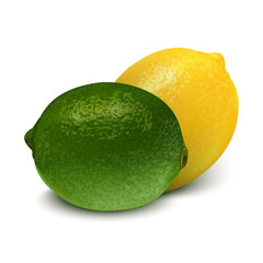 Realistic green yellow lime, lemon. 3d Vector illustration
