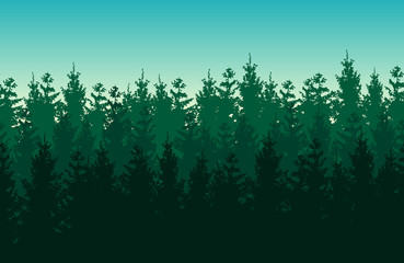Seamless green vector forest landscape with coniferous trees.