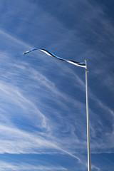 Flag of Estonia in the wind