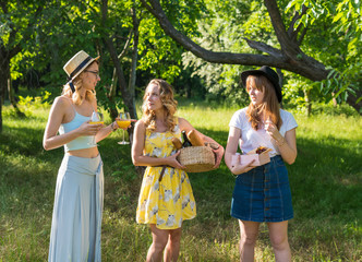 Group of girls friends making picnic outdoor. They choose location and drink cocktail