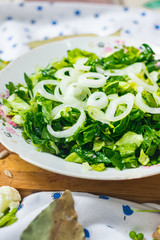 Fresh green salad with spinach onion sprouts and rings, cauliflower, salad leaves. Source of vitamins for lunch or dinner. Raw vegan vegetarian healthy food.