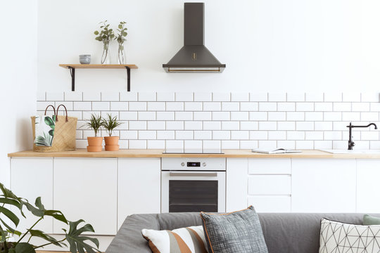 Stylish scandinavian open space with kitchen accessories, plants and sofa.  Design room with white walls.