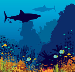 Underwater coral reef, fishes, shark and sea.