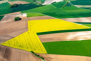 photo aérienne de champs de colza près d'Argueil en seine Maritime en France
