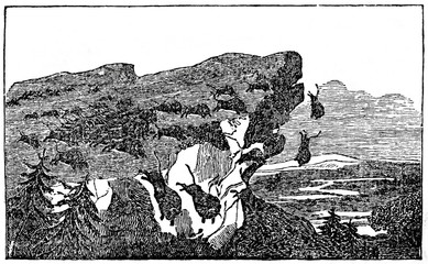 Bisons, taken by panic, is falling from cliff (from Das Heller-Magazin, February 8, 1834)