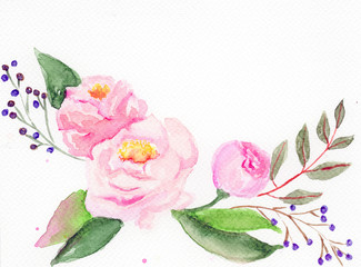 Watercolor rose. White background.