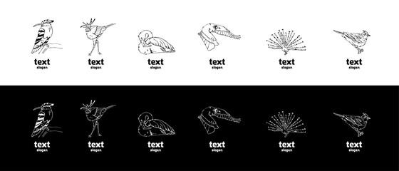 Hand-drawn pencil graphics, birds set