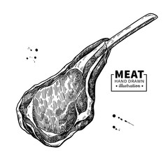 Lamb rib vector drawing. Red meat hand drawn sketch. Engraved raw food illustration.