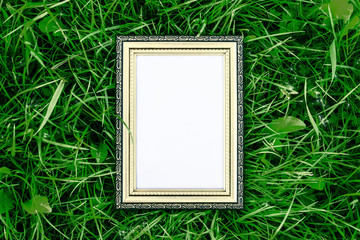 Golden wood frame on green grass background, luxury and nature concept