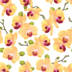 Seamless pattern of yellow orchid flower on white background template. Vector set of blooming floral for holiday invitations, greeting card and fashion design.