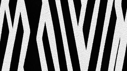 Zebra skin pattern. Animal skin background. Panoramic illustration
