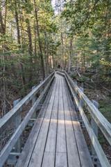 Boardwalk Hike