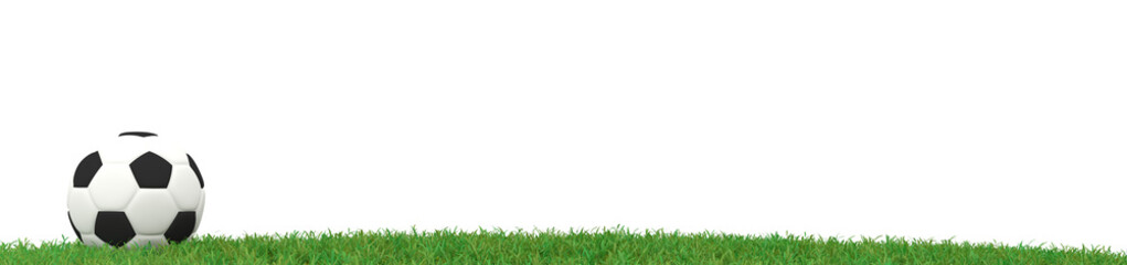Soccer ball on grass panorama, 3d rendering