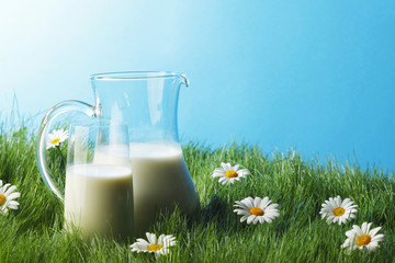 Milk jug and glass on flower field