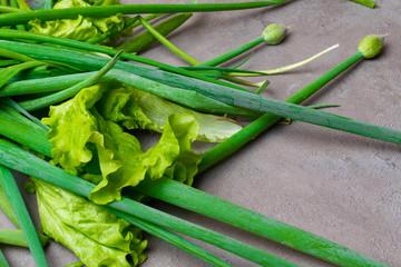 fresh green onion on grey table