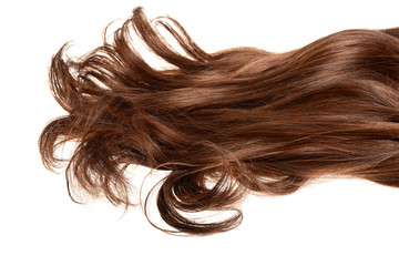 long curly brunette brown hair isolated