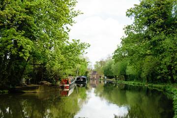 Boats on river. Scenic summer landscape