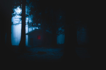 scary house illuminated in mysterious horror forest at night
