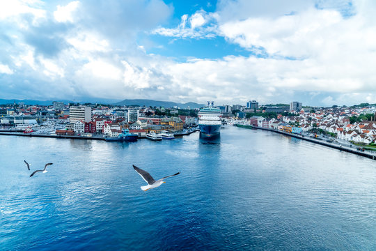 city of stavanger from a cruiseship with seagull