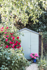 Garden shed surrounded by flowers in summer