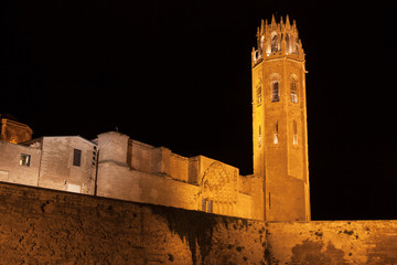 Old Cathedral of Lleida at Night