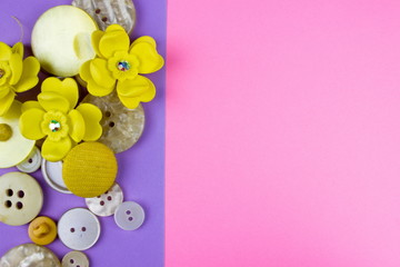Colorful clothes buttons. Design concept. Empty space for text