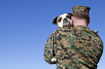 Military Man Hugs Bulldog
