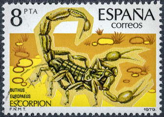 stamp printed in Spain shows scorpion