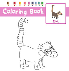 Coloring page of Coati animals for preschool kids activity educational worksheet. Vector Illustration.