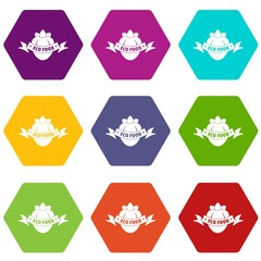 Eco fresh food icons 9 set coloful isolated on white for web