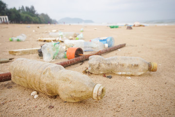 Garbage in the sea affecting marine lives / Environmental problem concept