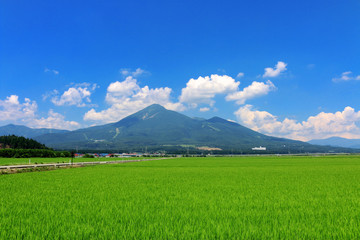 夏の田んぼと磐梯山(福島県・猪苗代町)