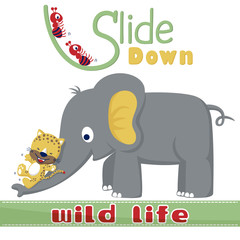 playing slide down with cute animals. Elephant, tiger, ants. Vector cartoon illustration