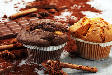 Wall Mural - Chocolate muffin and nut muffin, homemade bakery on grey background