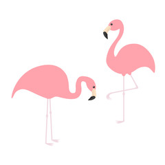 Two pink flamingo icon set. Exotic tropical bird. Zoo animal collection. Cute cartoon character. One leg. Looking on the ground. Decoration element. Flat design. Isolated. White background