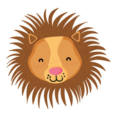 adorable lion head wild animal