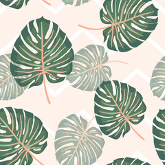 Seamless pattern split leaf philodendron tropical leaves on light pink and white zig zag background.printing wallpaper.vector illustration