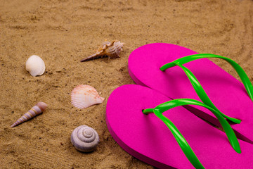 bright pink slippers and shells on the beach