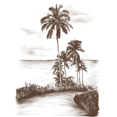 landscape road through the tropics with palm trees on the side of the sea background