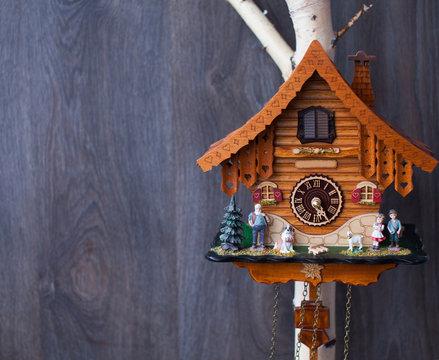 Vintage cuckoo clock on the wood wall.